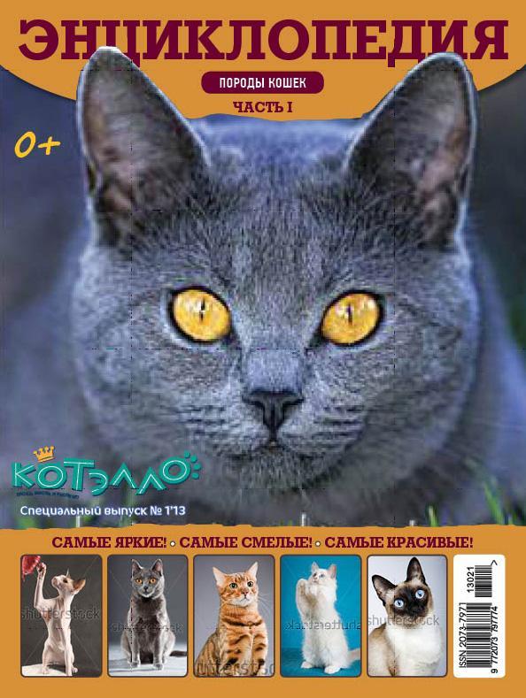 энциклопедия породы кошек фото